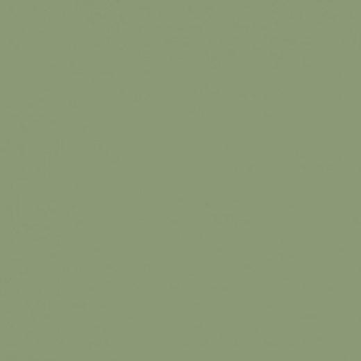 RAL 6021 Vert pâle Lisse mat / granité mat