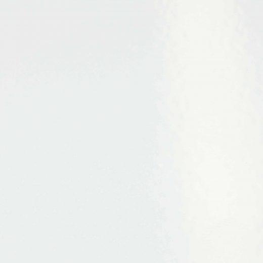 RAL 9016 Blanc signalisation Lisse mat / granité mat